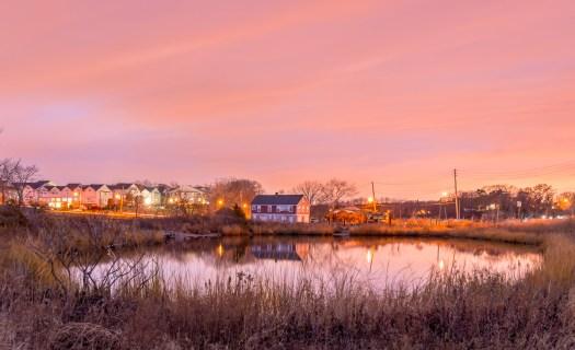 Staten_Island_Lemon_Creek_Park