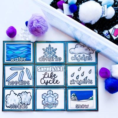 Snowflake Life Cycle Sensory Bin