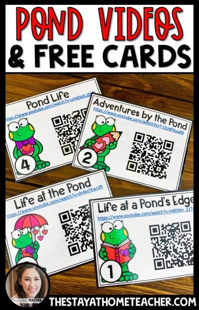 Pond Videos