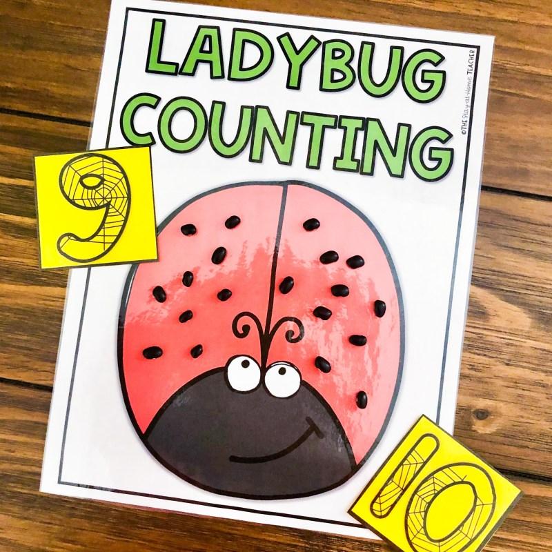 bug centers