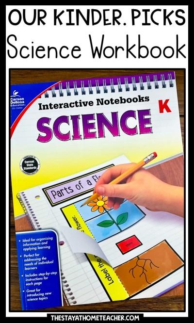 science workbook pin