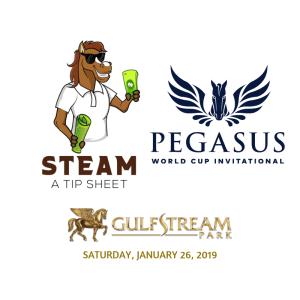 UPDATEDGulfstream.Pegasus.2019