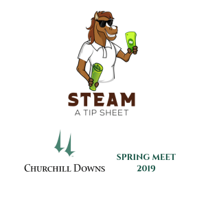 steam_cd_spring_2019_logo