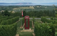 Phone Box at Luckett Vineyards