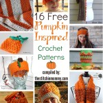 16 Free Pumpkin-Inspired Crochet Patterns