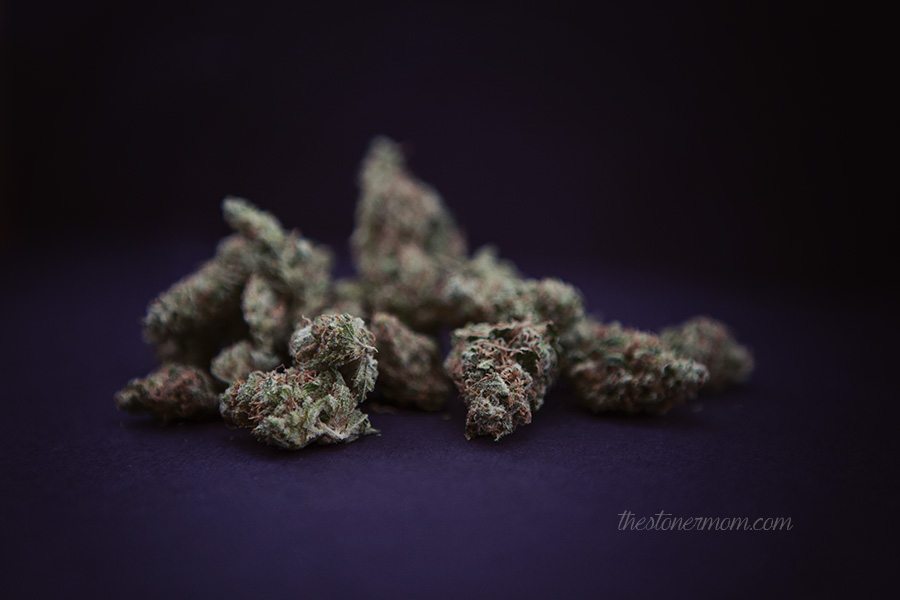 Strain Review: Lavender, the weed for when Mom needs some lovin'