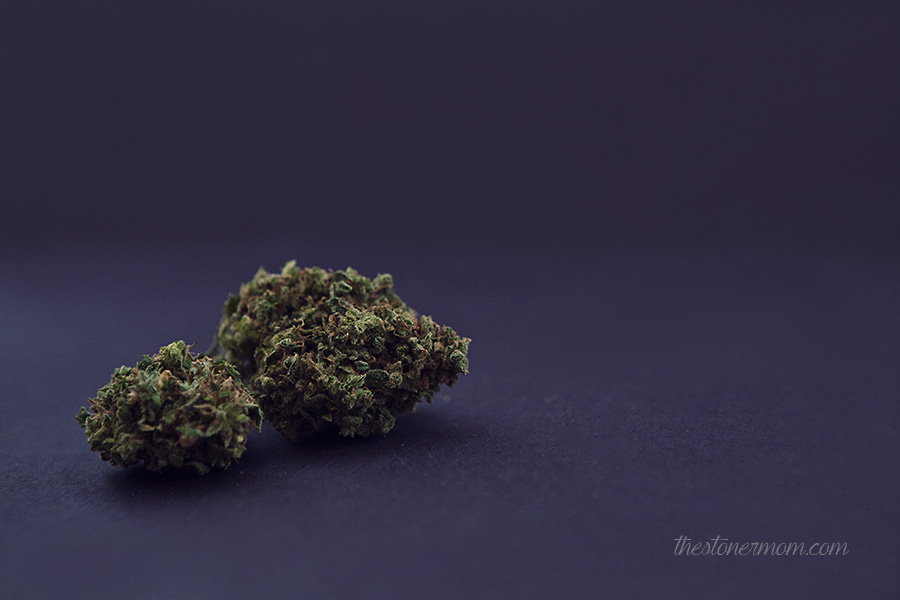 Cannabis Photography by The Stoner Mom