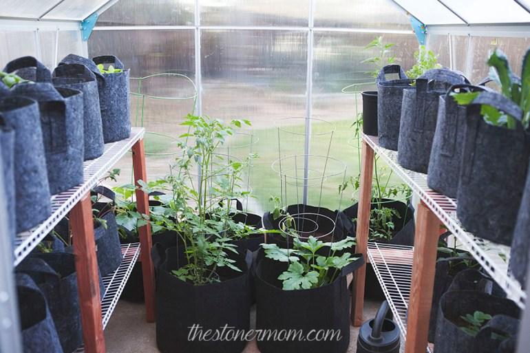 Greenhouse3w