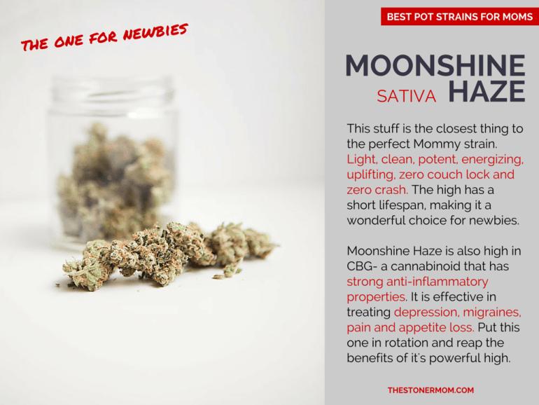 Mooshine Haze: The Best Sativa Pot Strains for Mom