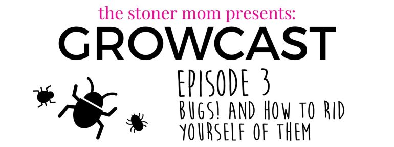 Bugs and Cannabis Plants: How to get rid of bugs forever