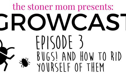 GrowCast Episode 3: Bugs and Cannabis Plants