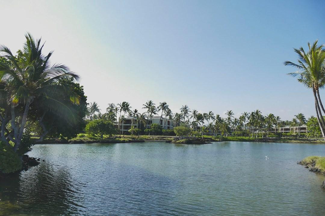 Hawaii_0078ew