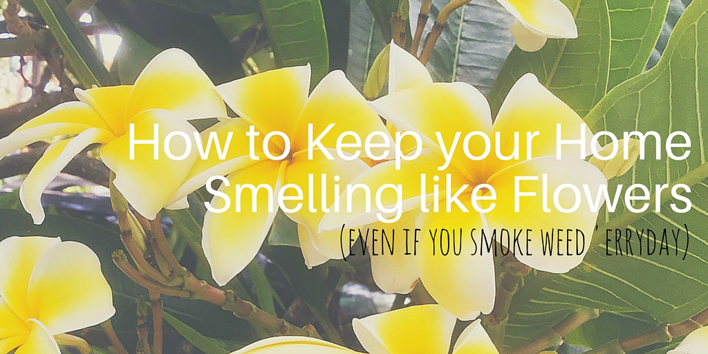 How to Smoke Weed Without the Smell