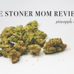 Pineapple Express Strain Review | The Stoner Mom Reviews