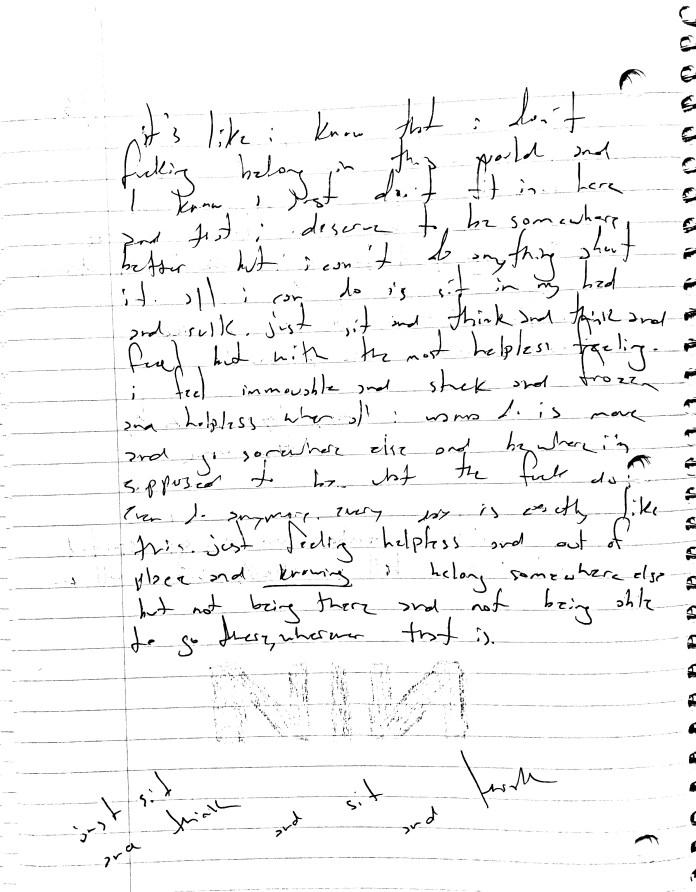 page45.jpeg
