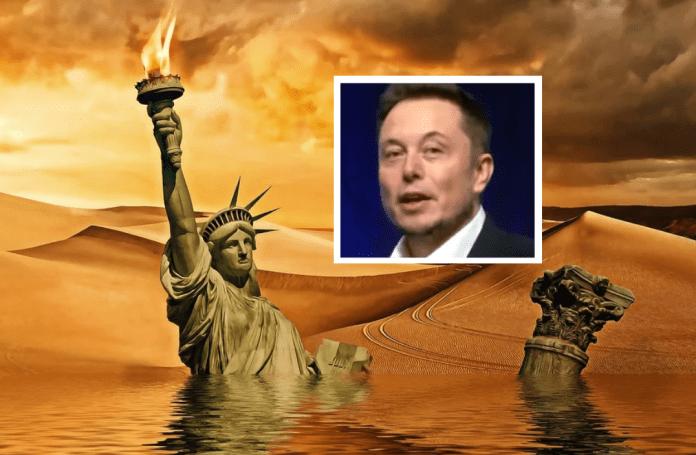 Elon Musk Short