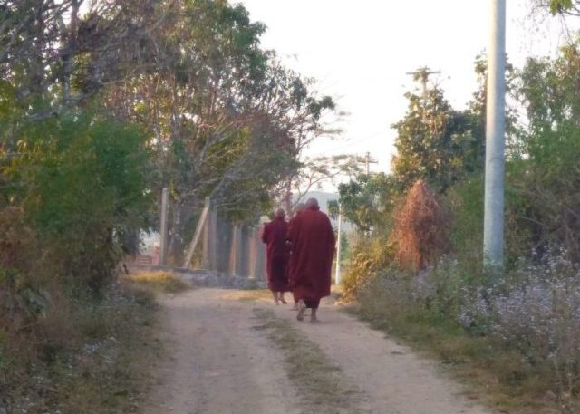 The Buddhist monks from Shwe Chaung Meditation Center are doing an alms round to collect food which is donated by locals