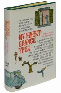 sweet-orange-tree