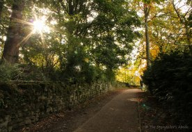 path with sunburst