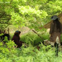 Wordless Wednesday: In the Forest Camp