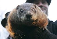 Punxsutawney Phil & Punctuation