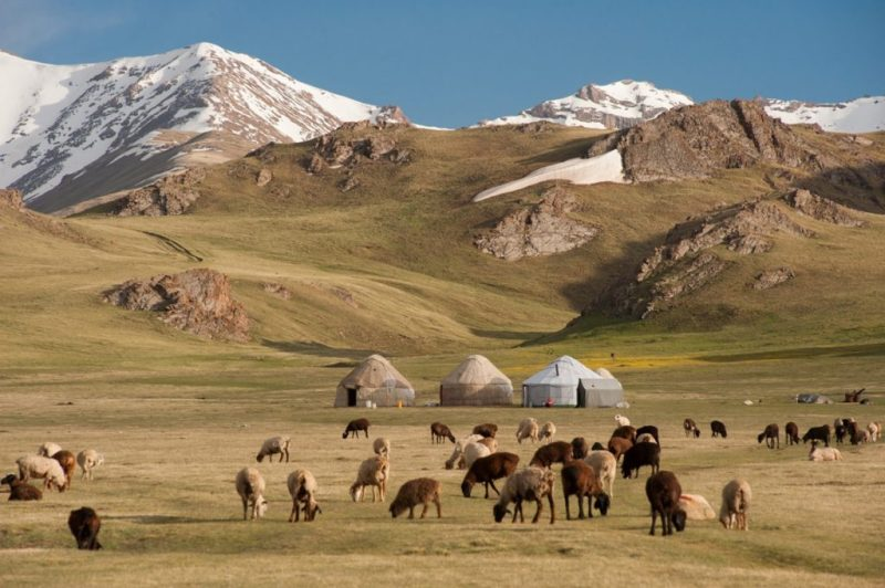 Your camp probably would've resembled this one, in modern Kyrgyzstan.