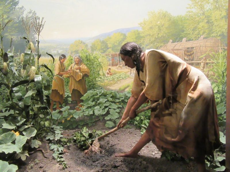 Native American history: Farmers in the Lower Pecos region of Texas, around 6000 BCE.