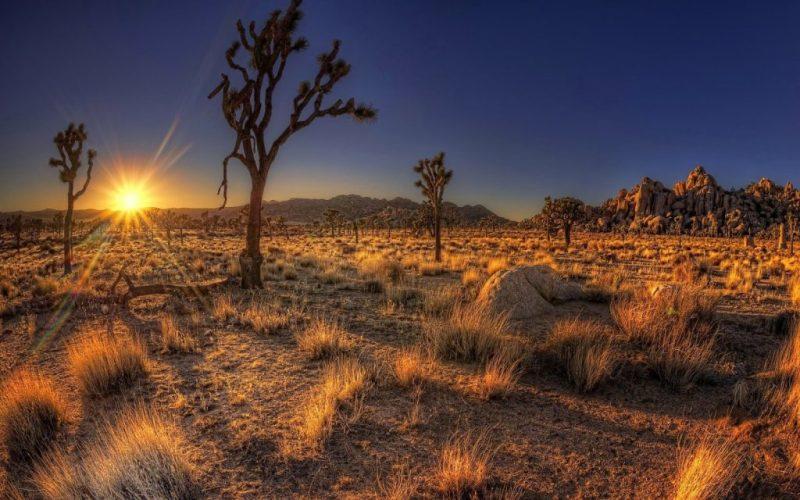 The desert of Arizona