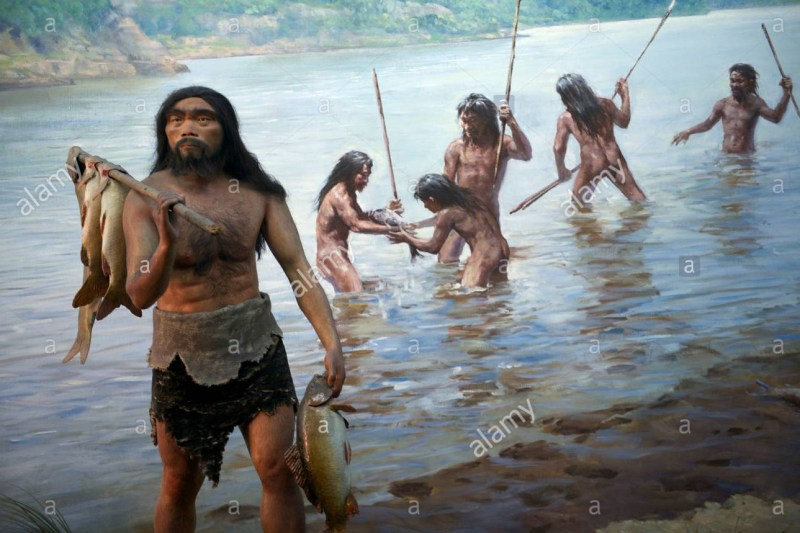 Palaeolithic Chinese hominids
