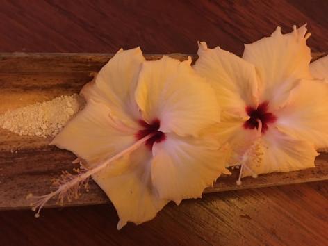 Beautiful Flowers Maldives