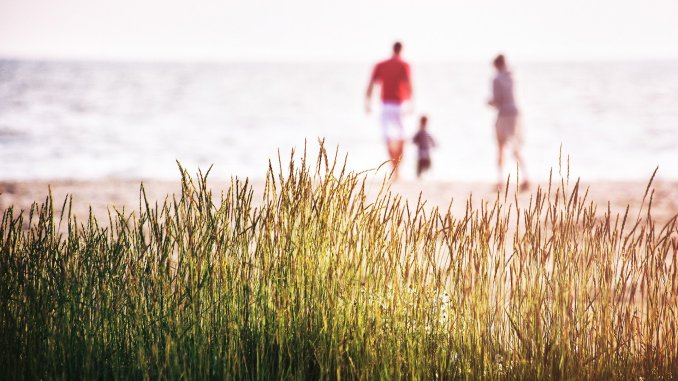 Things To Do With Your Family This Summer