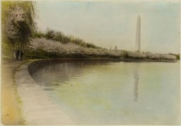 Tidal Basin, with cherry blossoms, and the Washington Monument (1920)