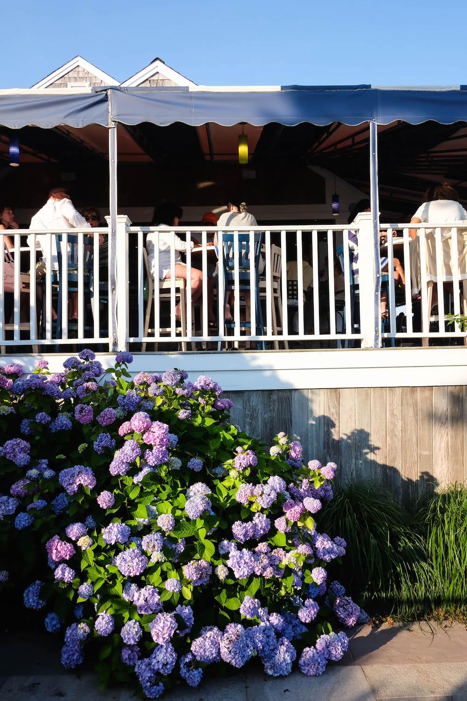The Wequassett Resort and Golf Club
