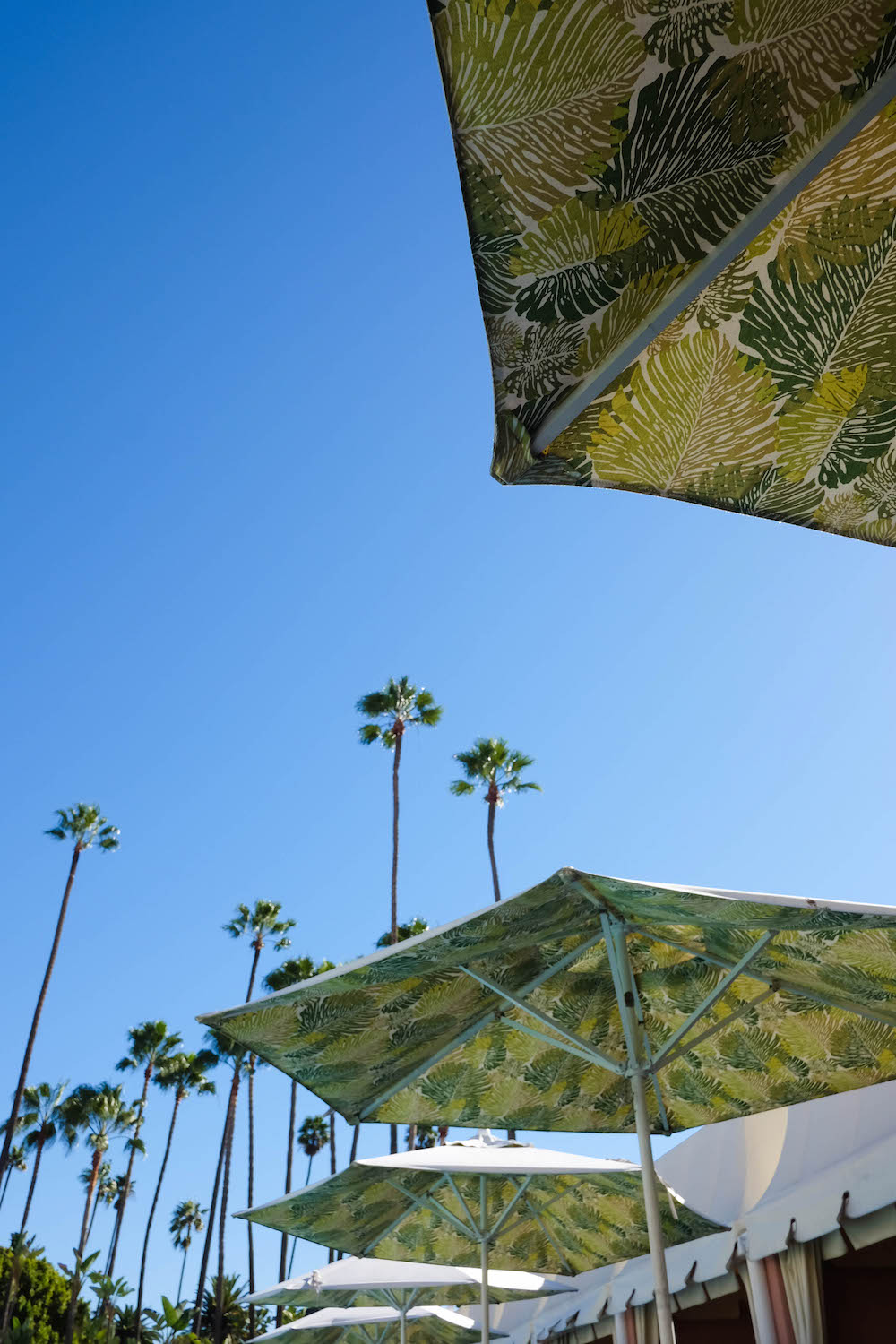 The Beverly Hills Hotel - pool area and umbrellas | The Stripe