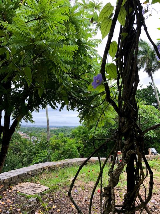 cuba travel guide hemingway house 2