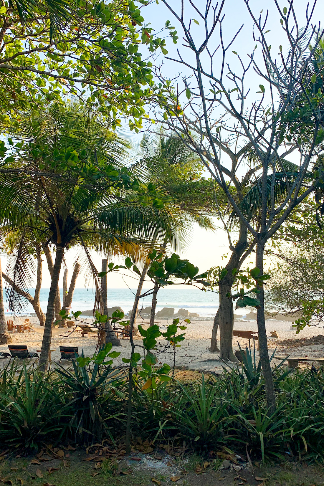 What to expect on a yoga retreat