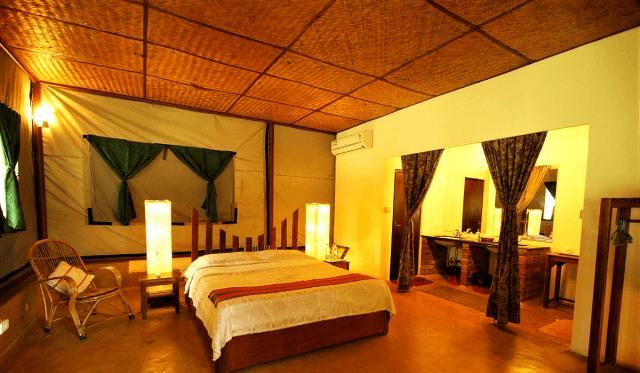 Jungle Hut