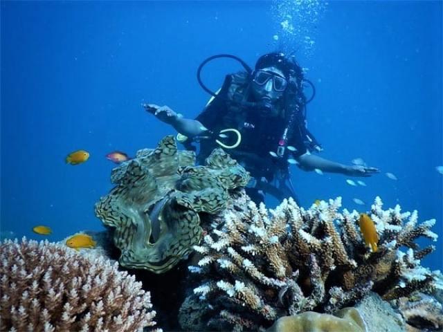 Malvan Marine Wildlife Sanctuary