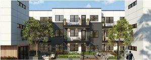 STUDIO-Architecture-Cassidy-Courtyard