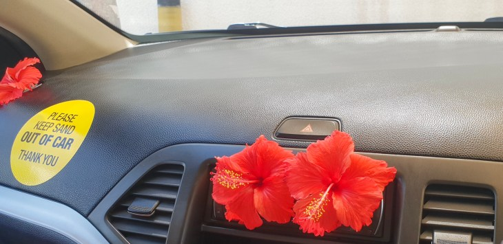 ICar dashboard, with three red hibiscuses and a sticker.