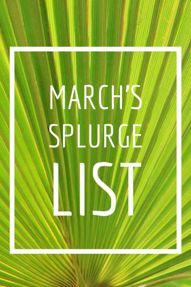 March Splurge List