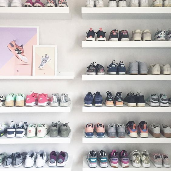 modern adult collections- sneaker collection