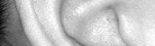 helix-piercing-titanium