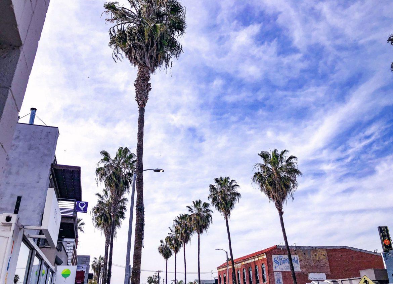 AbbotKinney-Kasey Ma TheSTyleWright LA Travel
