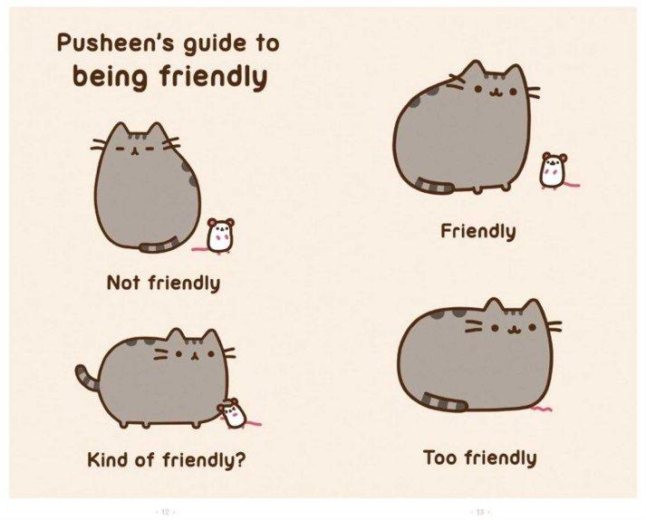 Pusheen the cat japanese plushie