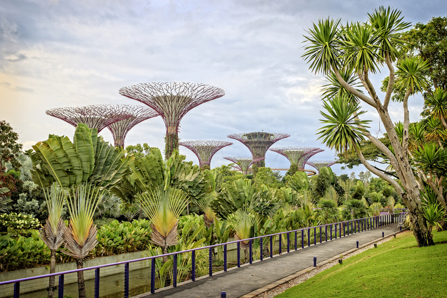 Kasey Ma Of The StyleWright Gardens by the Bay in Singapore
