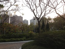 More beautiful park
