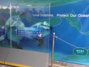 Dolphin Hospital area.