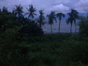 Beautiful area