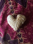 A heart coral discovered by kiddo and Megan